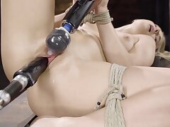 Fair-haired comprehensive is happy to be tied and be compelled cum ever after