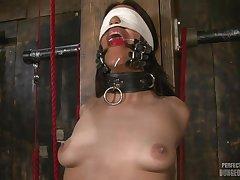 Perfect Slave Lyla Molestation BDSM porn pic