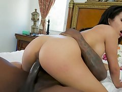 Aroused hottie lets this monster BBC to work her pussy on cam